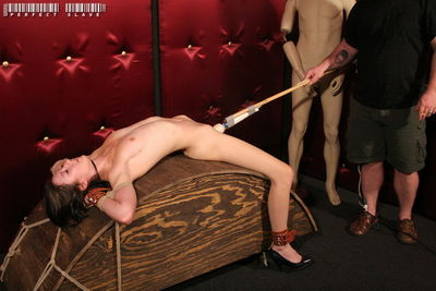 Perfect Slave - Welcome to the Biz, Part 3 - Sula Satanas