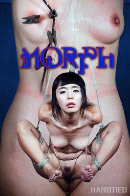 Hardtied - Jul 27, 2016: Morph | Marica Hase