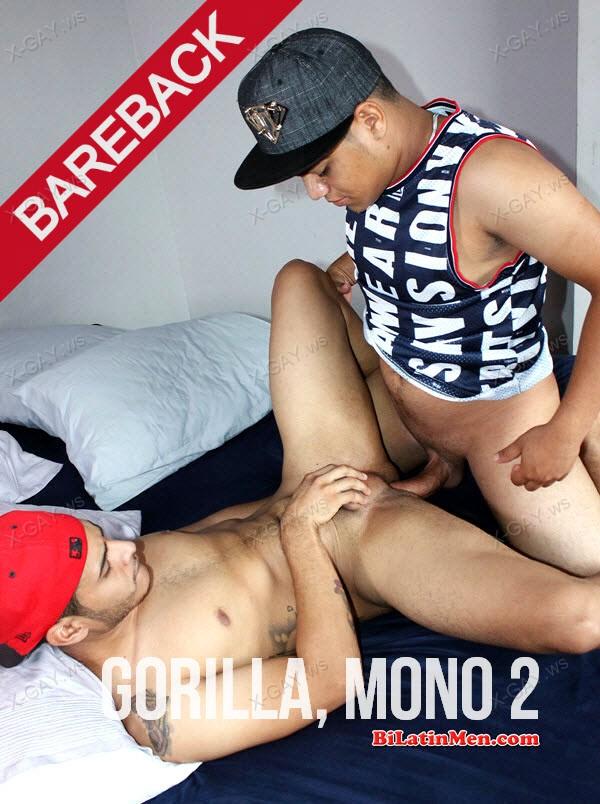 BiLatinMen: Gorilla, Mono 2 (Bareback)