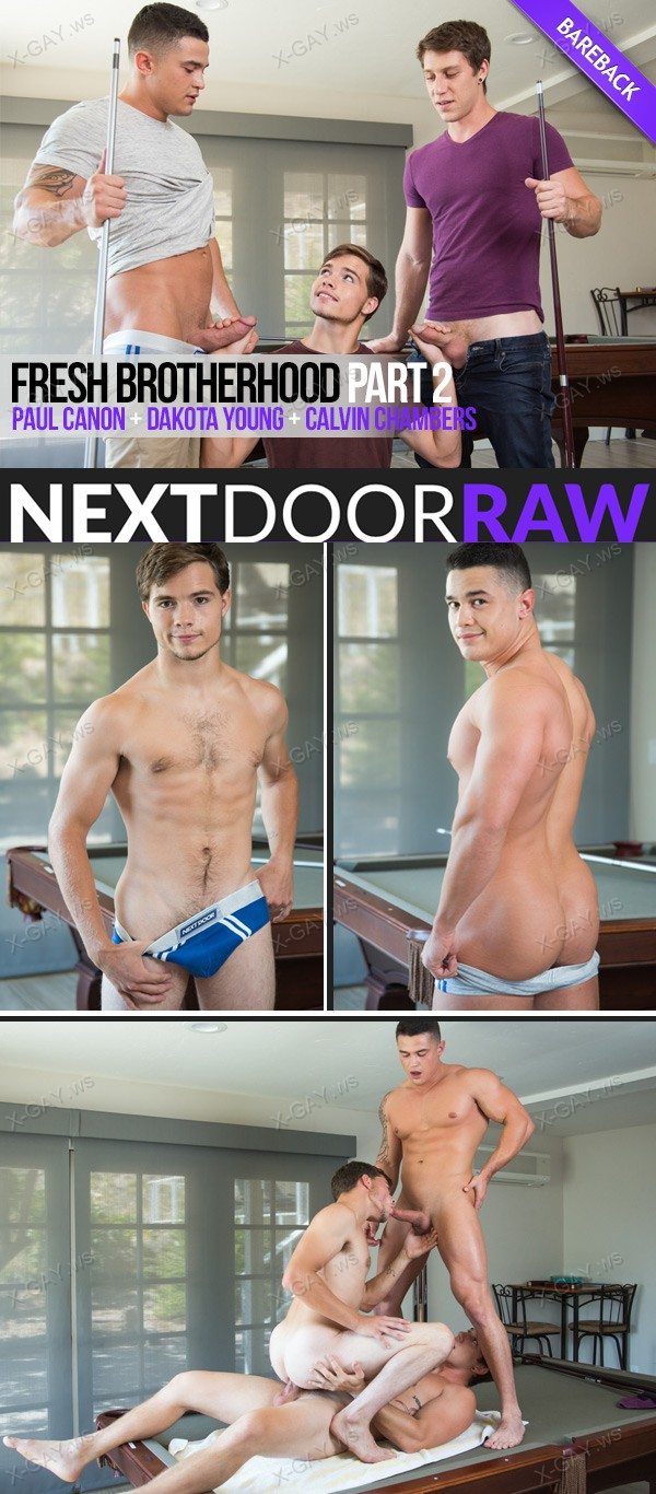 NextDoorRaw: Fresh Brotherhood, Part 2 (Paul Canon, Dakota Young, Calvin Chambers) (Bareback)