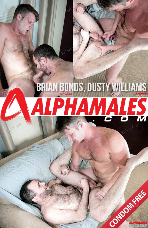 Alphamales: Brian Bonds, Dusty Williams (Bareback)