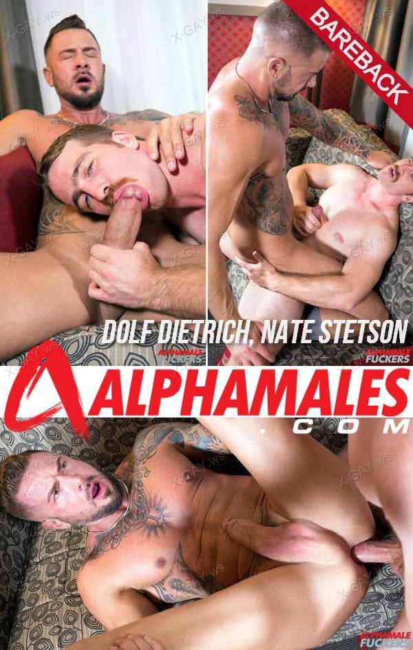 Alphamales: Dolf Dietrich, Nate Stetson