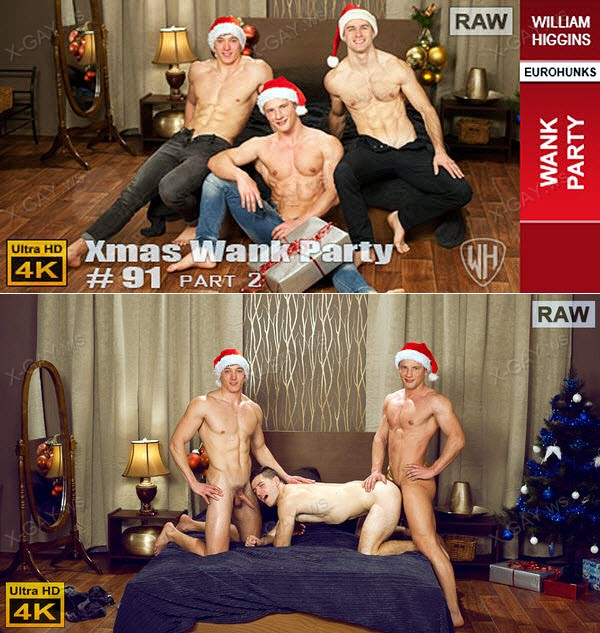 WilliamHiggins: Xmas Wank Party #91, Part 2 (RAW, WANK PARTY)