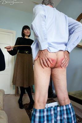 Disciplinary Arts