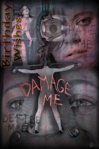 (15.11.2014) Birthday Wishes: Damage Me
