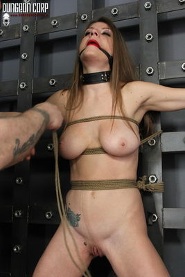 Dungeon Corp - Stripped, Spread and Vibed - Dillon Carter