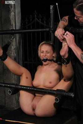 Strict Restraint - One Tough Cookie - Jamey Janes
