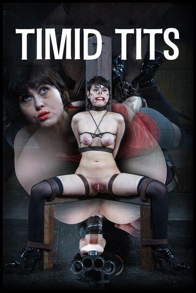 (08.05.2015) Timid Tits – Audrey Noir