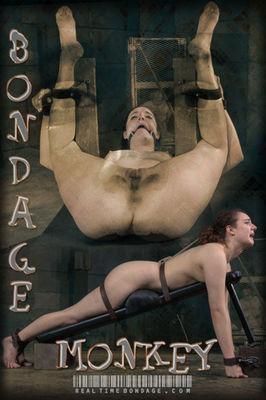 Real Time Bondage - May 16, 2015: Bondage Monkey Part 3 | Endza