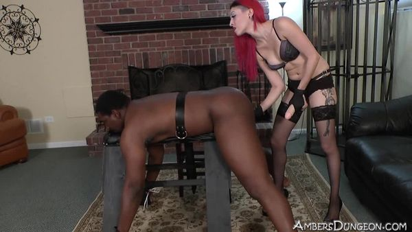 AmberDungeon - Mistress Severa - Black Beast - 2 of 3