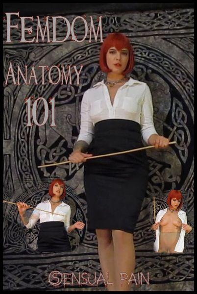 (29.10.2016) Femdom Anatomy 101 – Abigail Dupree