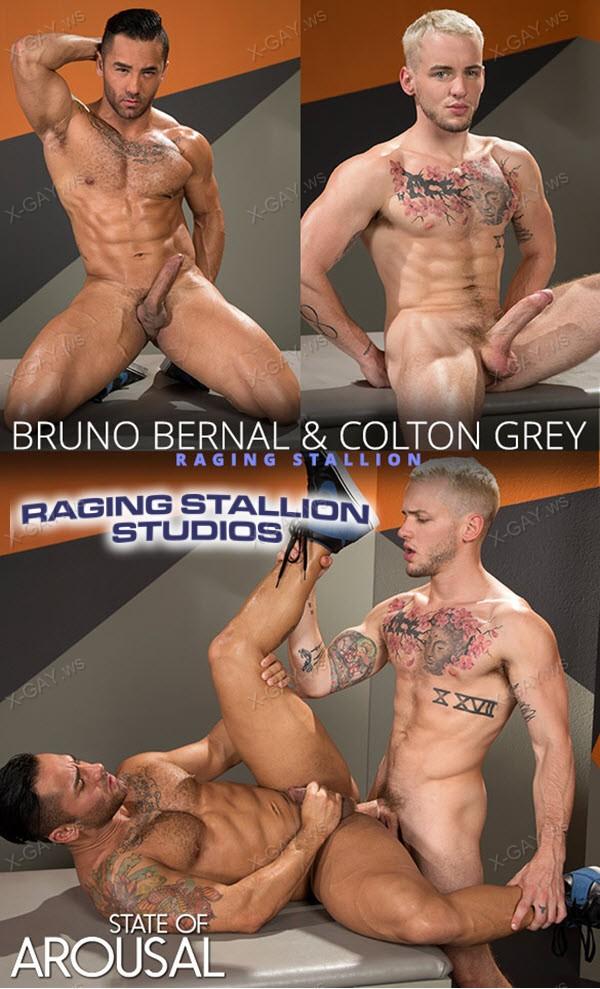 RagingStallion: State of Arousal (Colton Grey, Bruno Bernal)