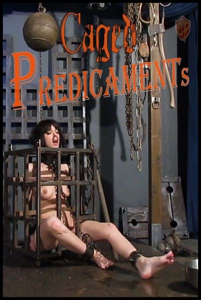 (15.03.2017) Caged Predicaments – Abigail Dupree