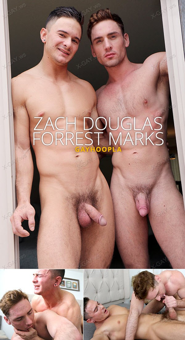 GayHoopla: Passionate FUCK with Zach Douglas and Forrest Marks