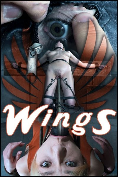 Wings – Sailor Luna | HD 720p | Release Date: June 23, 2017