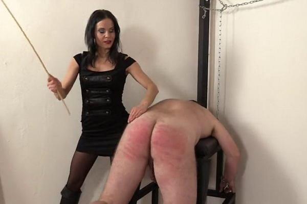 Princess rene femdom corporal punishment men are slaves no weak slaves princess jennifer, brunette on brunette