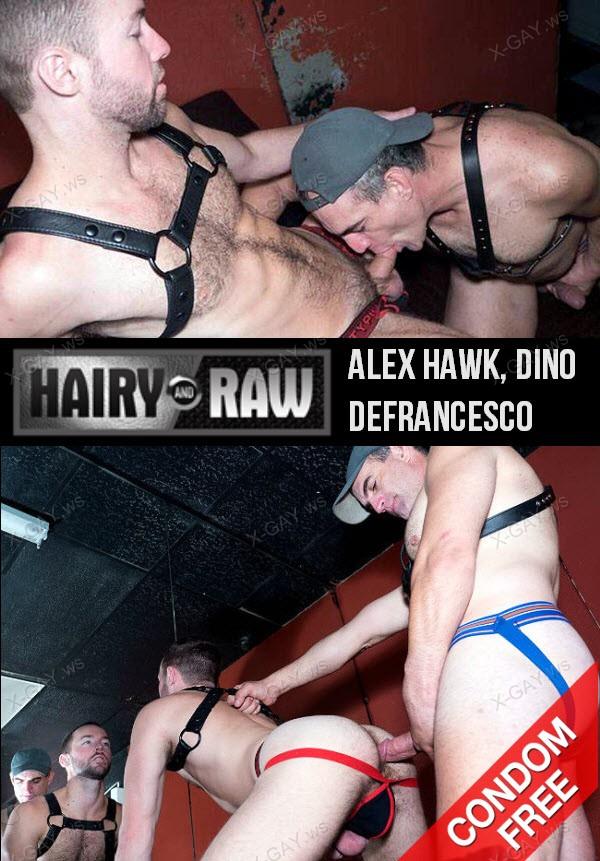 HairyAndRaw: Alex Hawk, Dino DeFrancesco (Bareback)