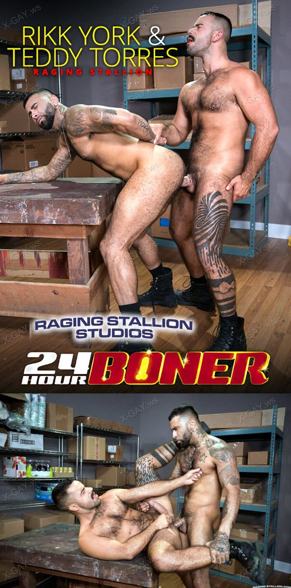 RagingStallion: Rikk York, Teddy Torres (24 Hour Boner)