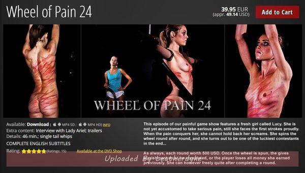 Wheel of Pain 24
