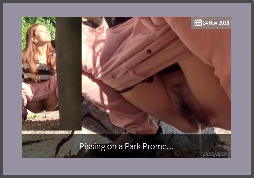 PissJapanTV - Pissing On A Park Promenade (531 MB)