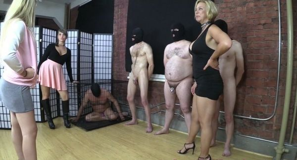 Peruses The Stables For A Ballbusting Slave [BratPrincess] Brianna (703 MB)