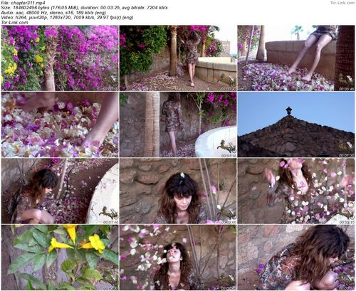 Mouse-Trip chapter - 311 video