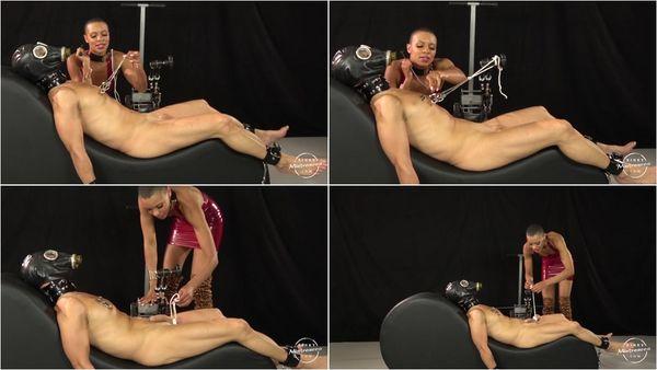The Pain Slut [KinkyMistresses] Queen Qandisa (720p)